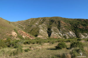 rock-formations-at-gondwana-game-reserve-garden-route