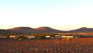 desert-rhino-camp