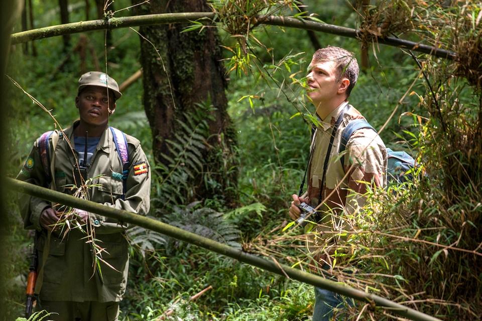 02 Golden Monkey Tracking Elela Africa