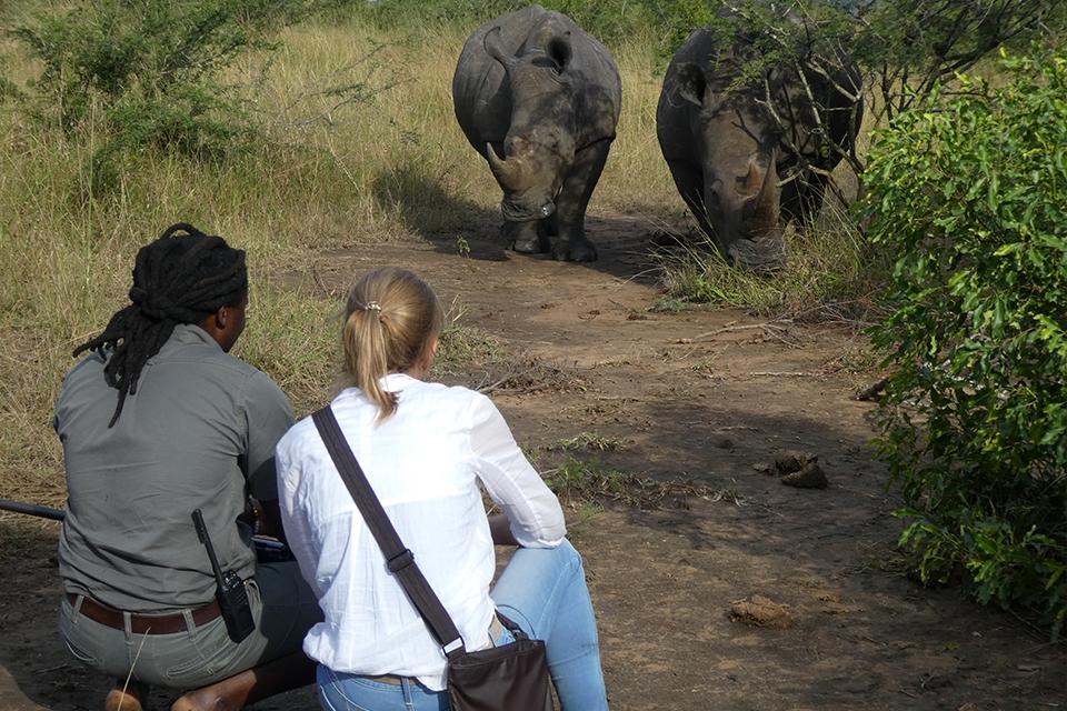 08 Mit dem Rhino Flüsterer 6