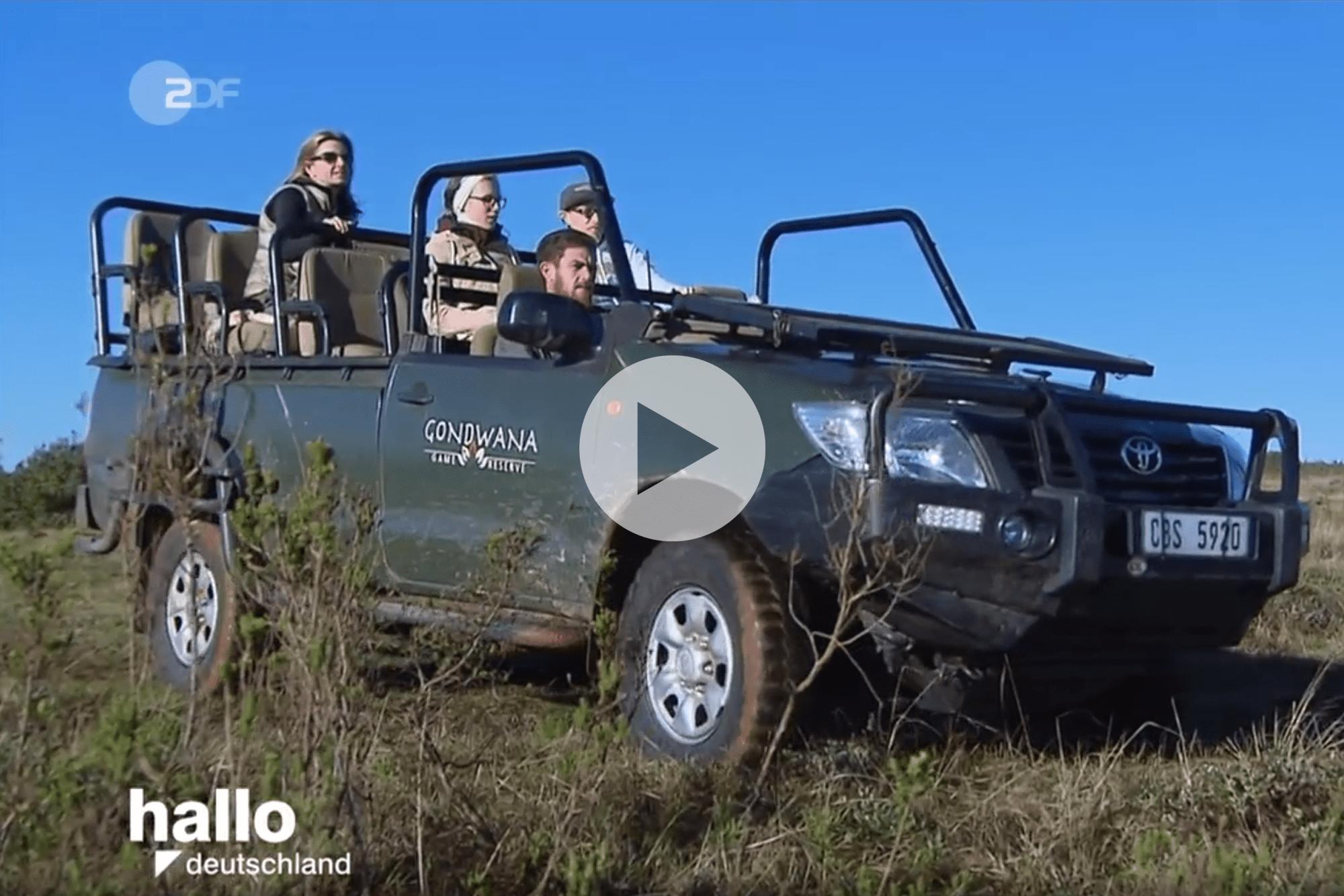 zdf-ranger-safari