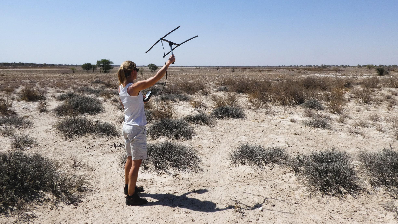 Infobox_Urlaubs_Ranger_Kalahari_Elela_Africa