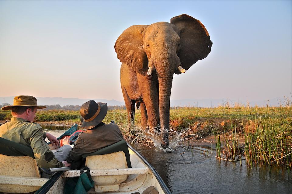 elela-africa-kanu-safari-elefant-simbabwe