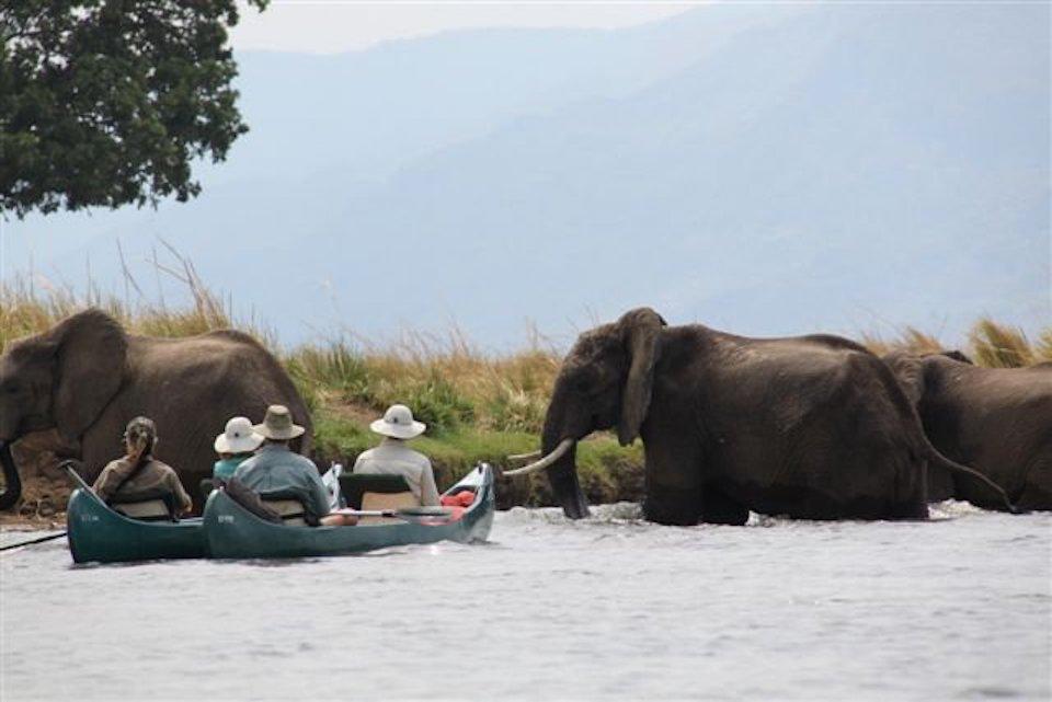 elela-africa-kanu-safari-sambesi-mana-pools-kanu